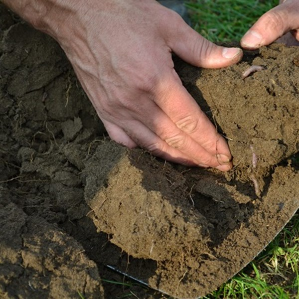 Online bodemcollege 'Duurzaam bodembeheer'